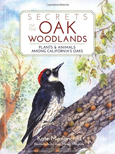 secrets-of-the-oak-woodlands-plants-and-animals-among-californias-oaks