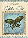 Papilio Paris by Gorham, Gregory- Fine Art Print on CANVAS : 24 x 32 Inches