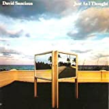 David Sancious - Just As I Thought - Arista - AB 4247