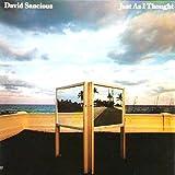 David Sancious - Just As I Thought - Arista - AB 4247