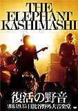 復活の野音 2013.9.15 日比谷野外大音楽堂[DVD]