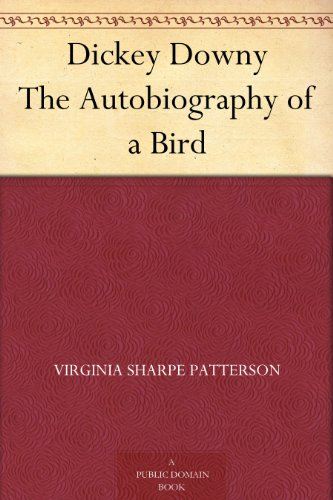 dickey-downy-the-autobiography-of-a-bird