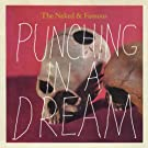 Punching in a Dream [Vinyl Single]