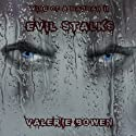 Evil Stalks: Mind of a Madman Audiobook by Valerie Bowen Narrated by Todd Waites