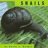 Snail Physical Characteristics | RM.