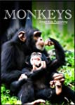 Monkeys - Kids Picture Book - 20 Fact...