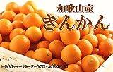 和歌山県産 【訳あり 家庭用】 金柑(きんかん) 2Kg