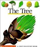 The tree /