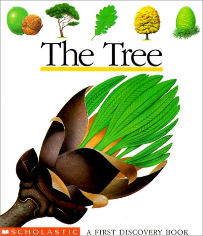 The Tree (First Discovery Books), GALLIMARD JEUNESSE, PASCALE DE BOURGOING