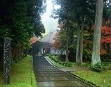 めざせパズルの達人 1000ピース 古平泉-仏国土を表す建築-中尊寺金色堂 11-385