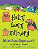 Hairy, Scary, Ordinary: What Is an Adjective? (0613438299) by Cleary, Brian P.