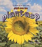 Que Son Las Plantas? / What is a Plant? (La Ciencia De Los Seres Vivos/Science of Living Things (Spanish)) (Spanish Edition)