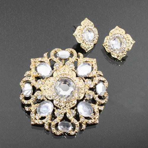 Crystal Studded Fashion Brooch & Earrings Set Dgp4254-bc204