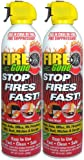 Fire Gone 2NBFG2704 White/Red Fire Extinguisher - 16 oz., (Pack of 2)