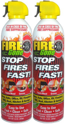 Fire Gone 2NBFG2704 White/Red Fire Extinguisher - 16 oz