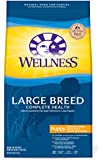 Wellness Complete Health Natural Dry Dog Food, Large Breed Puppy Health Chicken, Brown Rice & Salmon Recipe, 30-Pound Bag