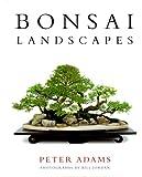 Bonsai Landscapes