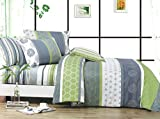 Serene 3pc 100% Cotton Duvet Cover Set : Duvet Cover and Two Matching Shams (Queen)