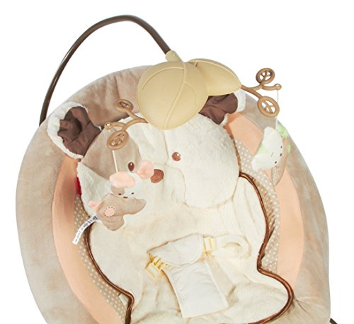 fisher price snugapuppy bouncer instructions