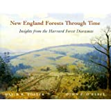 New England Forests Through Time : Insights from the Harvard Forest Dioramas
