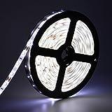 Waterproof LED Strip Lights,Oak Leaf 2835 SMD Day White 16.4 ft Light Strip for Lighting or Decoration