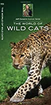 The World of Wild Cats (Jeff Corwin's Explorer Series)