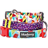 Blueberry Pet Collars For Dogs 2cm Medium Adorable Triangles in Colorful Spring Pastels Designer Dog Collar