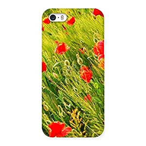 Impressive Beauty Flowers Farm Back Case Cover for iPhone SE