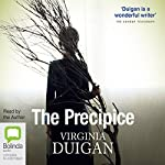 The Precipice | Virginia Duigan