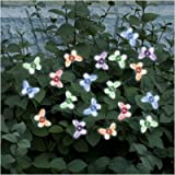Smart-Solar-3705MR20-Solar-Light-String-20-Multi-Color-LEDs-with-Translucent-Butterfly-Covers