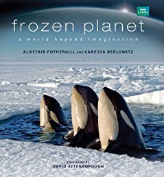 Frozen Planet: A World Beyond Imagination
