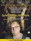 synecdoche, new york dvd Italian Import by philip seymour hoffman