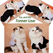 i'Pet? Handsome Prince Cat Bridegroom Wedding Tuxedo Faux Twinset Design Small Boy Dog Formal Attire Doggy Party Wear Puppy Birthday Outfit Doggie Photo Apparel with Buttons Holiday Fabric Clothes Halloween Classics Collection Costume (Black Tuxedo, X-Large)