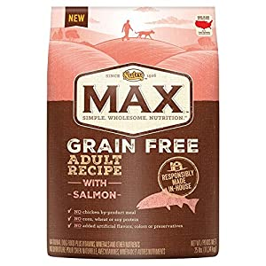 NUTRO MAX Adult Grain Free Recipe With Salmon Dry Dog Food 25 Pounds
