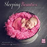 img - for Sleeping Beauties: Newborns in Dreamland 2014 Wall (calendar) book / textbook / text book