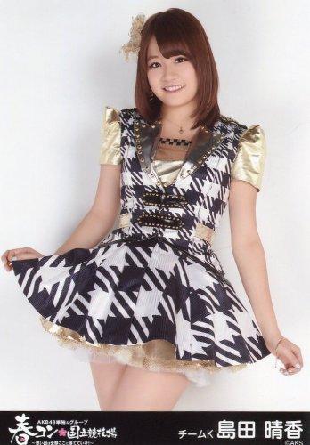 AKB48 公式生写真 春コン in 国立競技場 AKB48 単独コンサートver. 会場 【島田晴香】