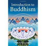 Introduction to Buddhism: An Explanation of the Buddhist Way of Lifeby Kelsang Gyatso Geshe