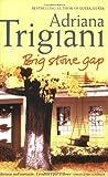Big Stone Gap: A Novel (Big Stone Gap Saga 1)