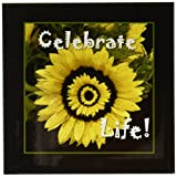 3dRose cst_33483_4 Yellow Sunflower Celebrate Life with Black Frame-Ceramic Tile Coasters, Set of 8