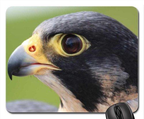 peregrine-falcon-mouse-pad-mousepad-birds-mouse-pad