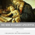 Lost Books of The Bible: The New Testament Apocrypha Audiobook by  Charles River Editors Narrated by Jack Chekijian