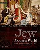 img - for The Jew in the Modern World: A Documentary History book / textbook / text book