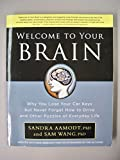 img - for Welcome to Your Brain book / textbook / text book