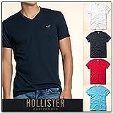 ホリスター メンズ Tシャツ  半袖 刺繍入り Vネック Tシャツ T-Shirt 4色 324-369