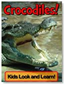 Crocodiles! Learn About Crocodiles and Enjoy Colorful Pictures - Look and Learn! (50+ Photos of Crocodiles)