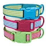 East Side Collection  ZA2110 10 43 Gingham Sweetie Collar, 10-16-Inch, Green