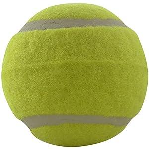 Dogloveit 2.5 Inch Dog Retrieve Tennis Ball Toy
