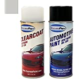 Aerosol All Inclusive Package , NH-700M (2014) Alabaster Silver Metallic : ExpressPaint Aerosol Honda Accord Automotive Touch-up Paint - Alabaster Silver Metallic NH-700M - All Inclusive Package
