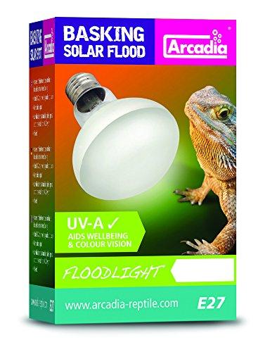 Arcadia-SBF100-Basking-Solar-Lampe-UVA-Floodlight