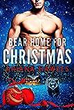 Bear Home for Christmas